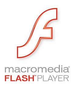 El plugin Flash Player no funciona correctamente.